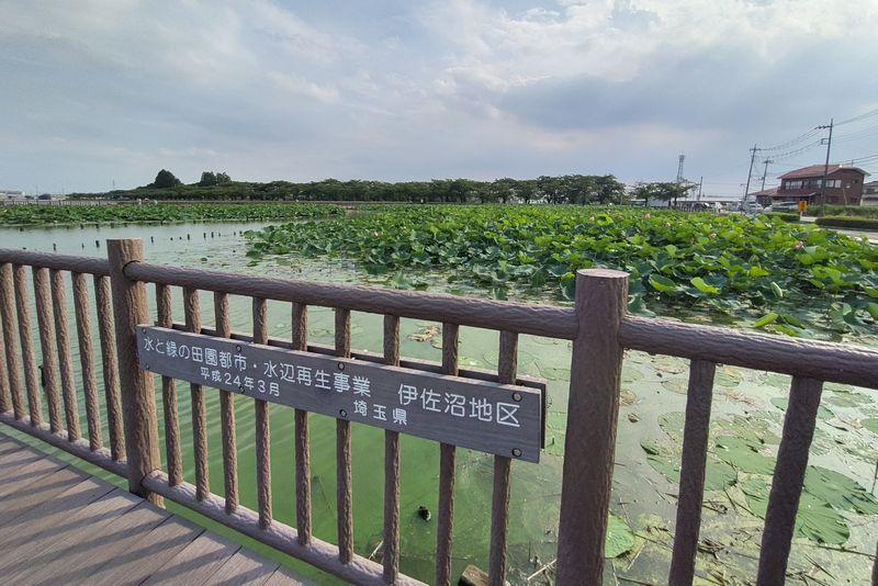 川越・伊佐沼公園