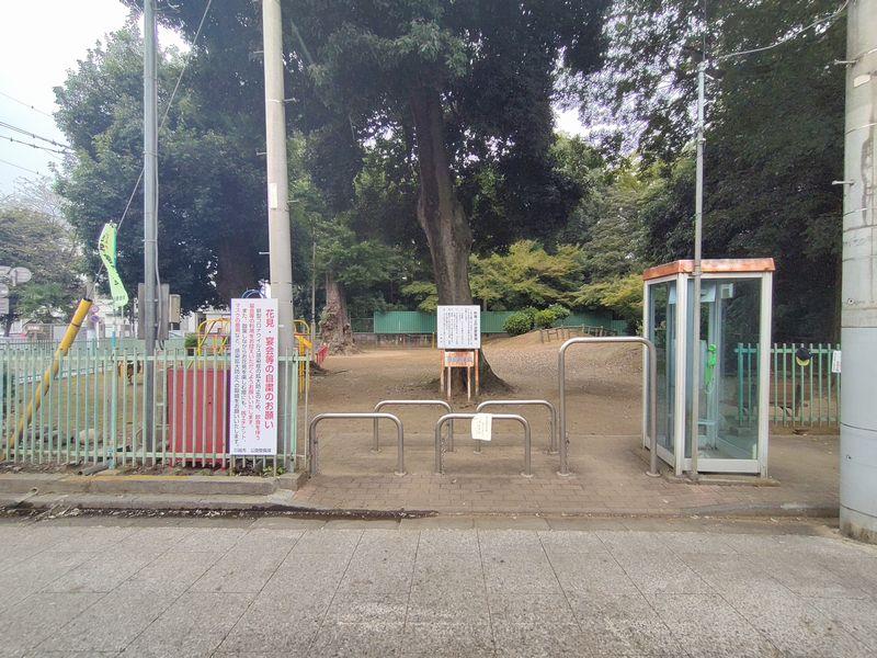 川越・喜多院公園