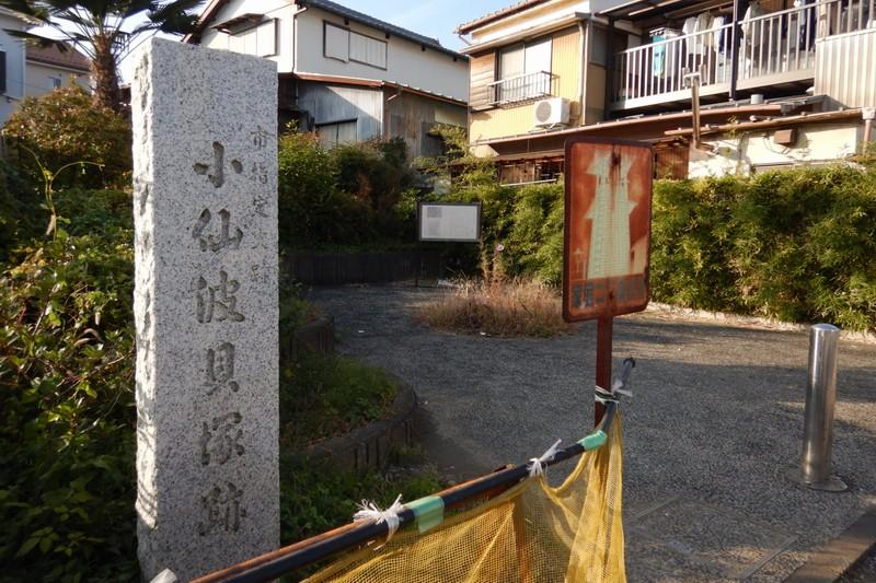 小仙波貝塚跡│住宅街にひっそりたたずむ川越の遺跡!歴史・見どころを紹介