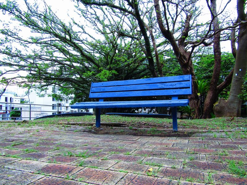 川越市・みよしの公園